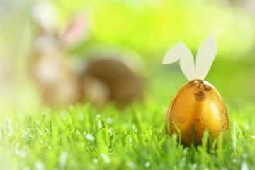 Goldenes Ei mit Hasenohren auf der Wiese